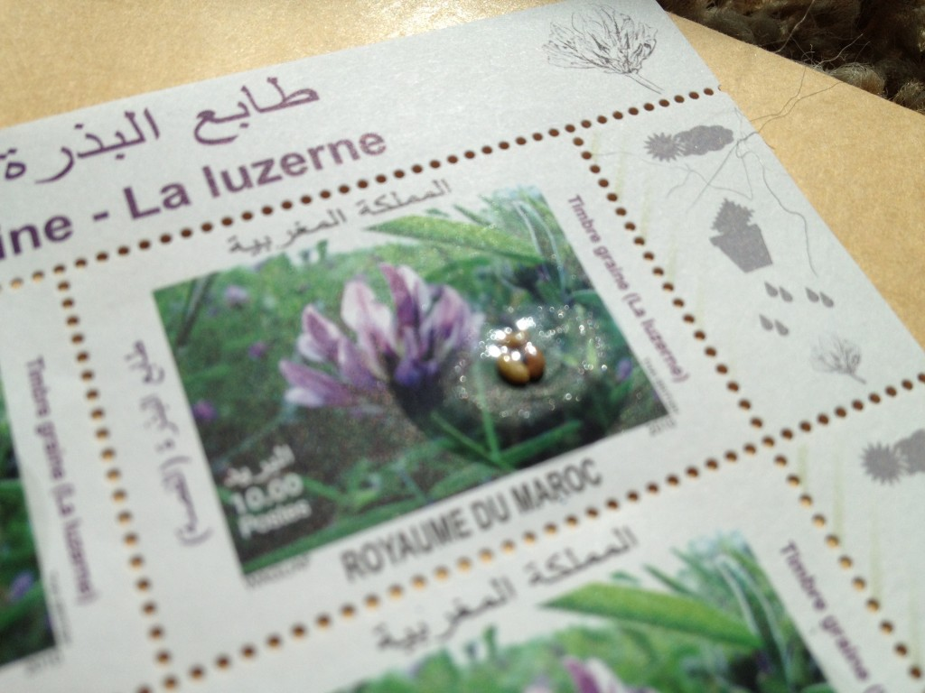 Moroccan stamp detail