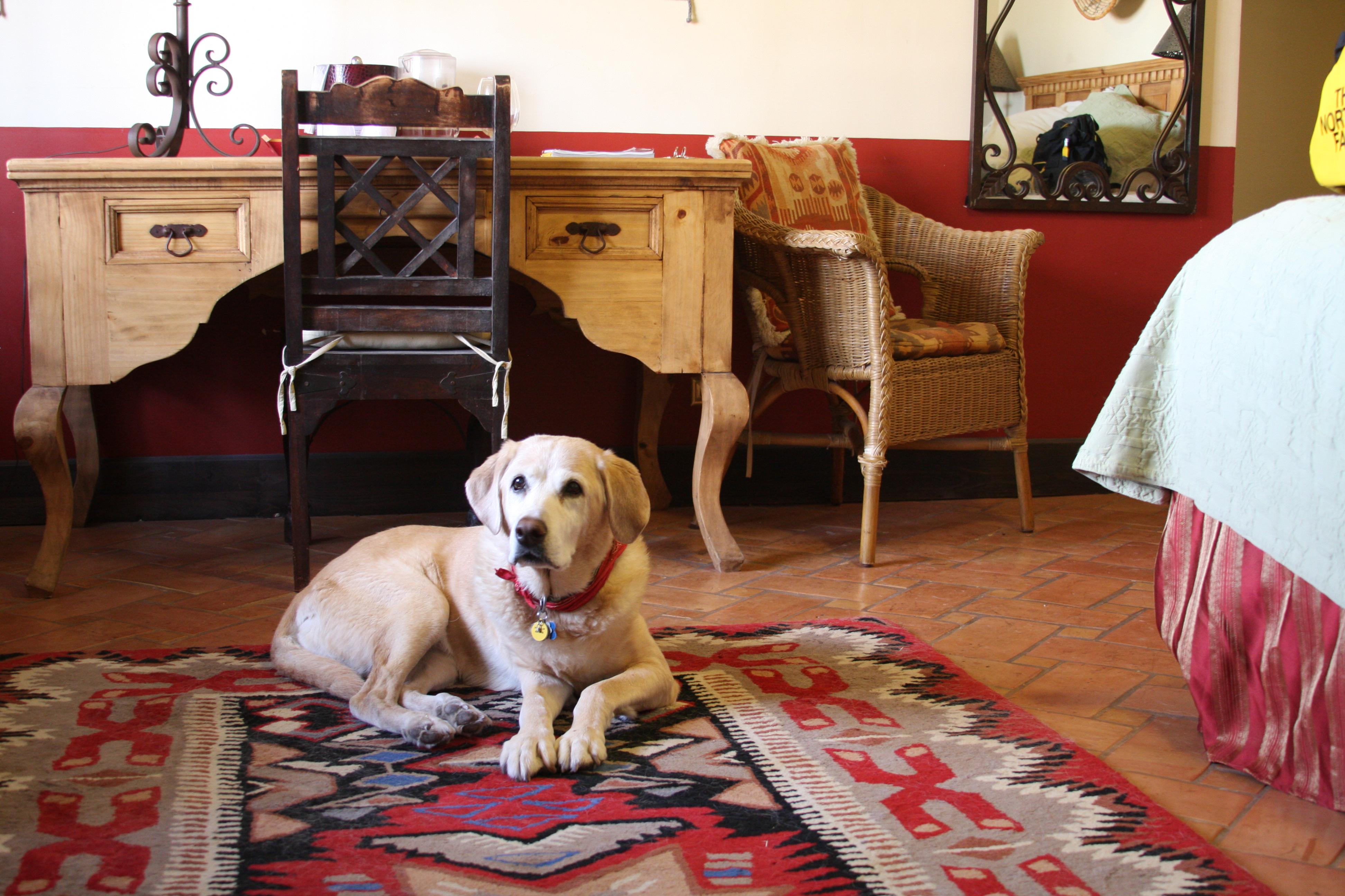 Faeden at La Posada Hotel, Winslow, AZ